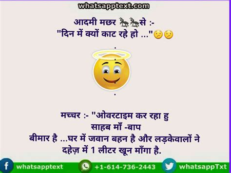 mosquito   overtime funny answer whatsapp
