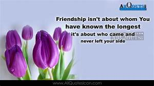 Best Friendship Quotes in English HD Wallpapers Best ...