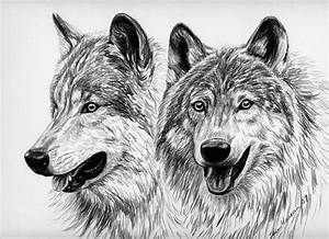 Wolves by Sheri Marean