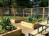 raised vegetable garden Raised Garden Beds: How to Build and Install Them
