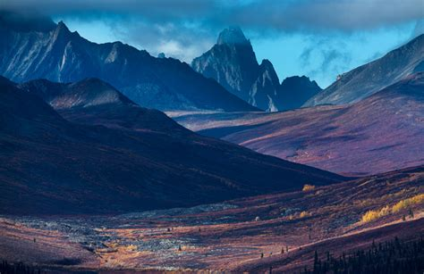 professional photography landscape from concept to print david noton on landscape