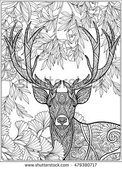 coloring page deer forest coloring book stock vector