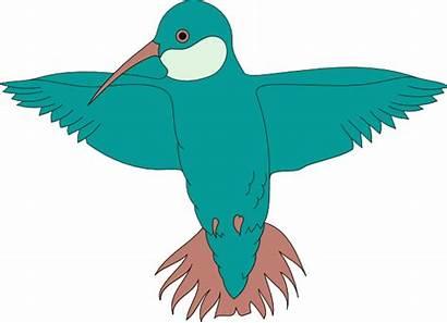 Wings Hummingbird Clip Clipart Bird Spread Spreading