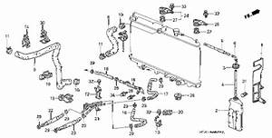 honda prelude coolant hose diagram honda auto parts With honda accord wiring diagram in addition 1991 honda accord hose diagram