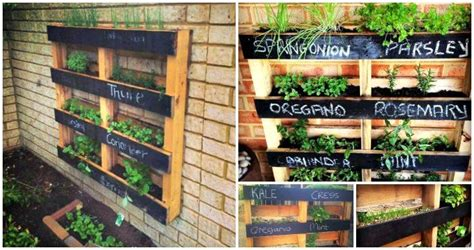 How To Build A Vertical Pallet Garden by How To Build A Vertical Pallet Herb Garden