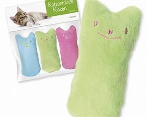 Füllwatte Für Kissen : forck katzenminze kissen 3 st ck knuddelkissen ~ Watch28wear.com Haus und Dekorationen