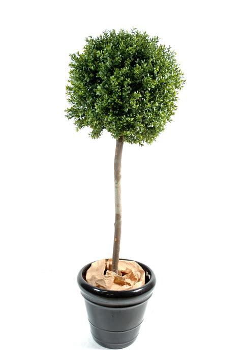 boule tig 233 e artificielle plantes arbres compositions et tableaux de v 233 g 233 taux artificiels
