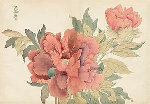 from Original Tanigami Konan Japanese Woodblock Peony ...