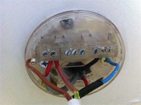 Ceiling Rose Light Fan Wiring Confusion Diynot Forums