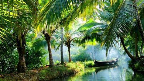 kerala places tourist ashtamudi