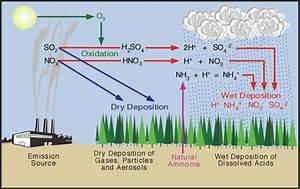 8 H  Acid Precipitation