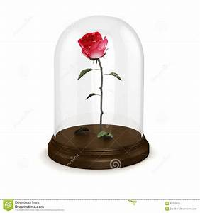 Rose In Glas : 3d red rose in a glass dome stock illustration image 41753570 ~ Frokenaadalensverden.com Haus und Dekorationen