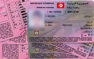 Ants Permis De Conduire En Cours D Instruction : tunisie d mant lement d 39 un r seau de falsification de permis de conduire part 288730 ~ Medecine-chirurgie-esthetiques.com Avis de Voitures