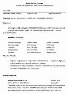Simple resume for job simple job resume best for Easy resume format sample