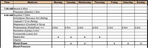 medication intake schedule templates word templates