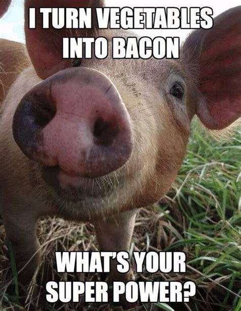 Pig Meme - what s your super power beheading boredom