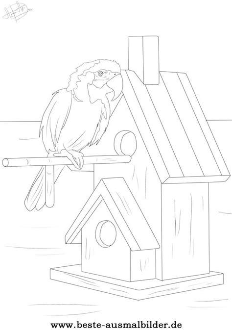 ausmalbild vogel ausmalbild von papagei und anderen