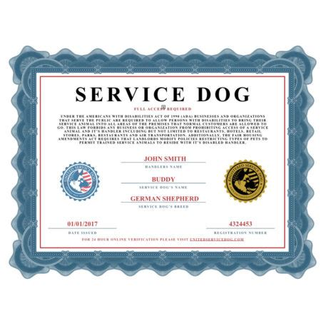 id cards  certificates product categories