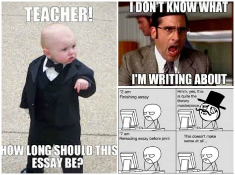 Essay Memes - how to write the perfect blog post