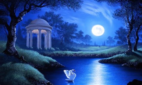 swan lake night full moon trees grass hd wallpaper