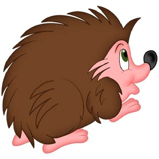 baby hedgehog clipart   cliparts  images