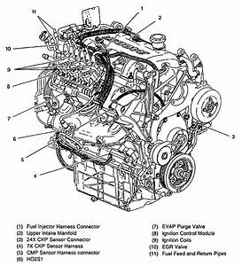 Gm 3 4l V6 Engine Diagram 2001  Gm  Free Engine Image For