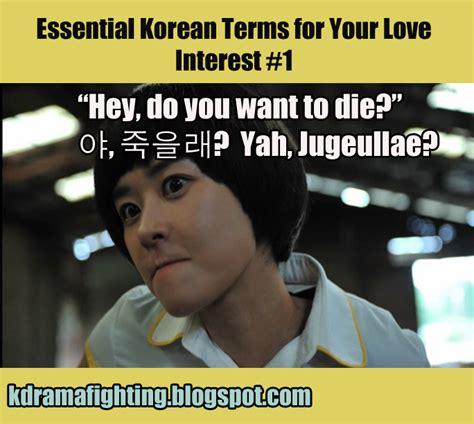 Meme Korea - essential korean terms for love interests guest post at viki