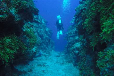 Dive Resorts Grand Cayman - grand cayman resort specials and packages