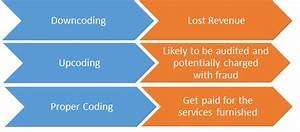 Evaluation And Management  E  M  Coding  Guidelines And