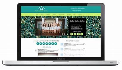 Website Websites Browsers Chomp Web Designing Helps
