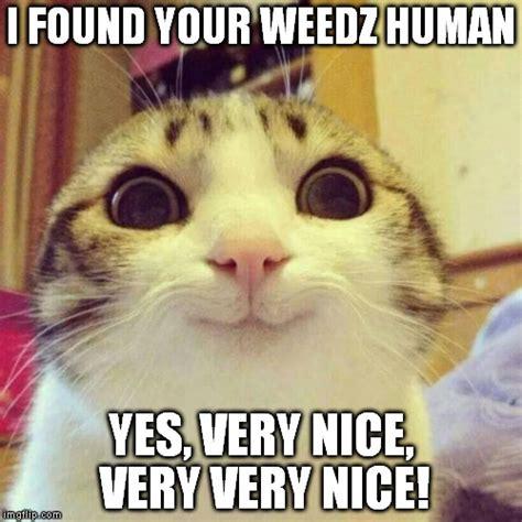 Very Nice Meme - smiling cat meme imgflip