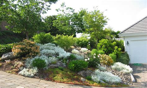 xeriscape design ideas 1000 images about xeriscape on pinterest xeriscaping front yards and landscape design