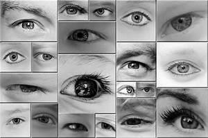 Eyes - Black And White Free Stock Photo - Public Domain ...