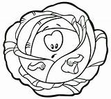 Cabbage Coloring Pages Template sketch template