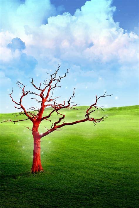 paesaggio prato albero rosso secco natura sfondi