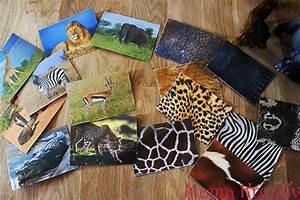 Spiel Selber Machen : spiele selber machen assoziationsspiel afrikanische tiere mama kreativ ~ Buech-reservation.com Haus und Dekorationen