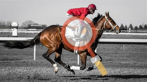 horse race handicapping handicap system racing criteria powerful each betoclock