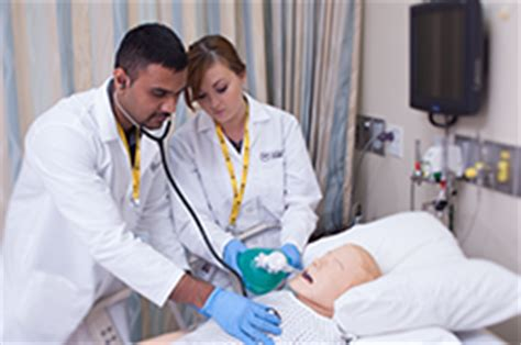 Respiratory Therapist School. Child Clinical Psychology Graduate Programs. Printing Services Boston In Memory Data Grids. Commercial Ice Making Machines. Web Page Development Cost Trade King Reviews. Federal Tort Claims Act Lifetime Income Rider. Flat Rate Movers Bronx Ny College Access Now. What Are Solar Panels Made Of. English Communication Classes