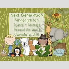 Kindergarten Next Generation Science Plants Animals Complete Unit From Primarily Teaching On