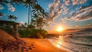 Hawaii, Exotic, Wallpaper, Hd, Sea, Sand, Beach, Palms, Green, Sky