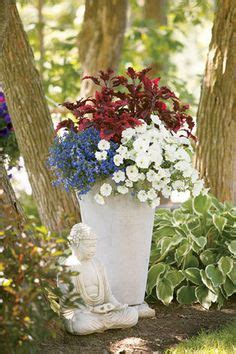 Recipes Patriotic Planting by 1000 Images About Window Box Planter And Container