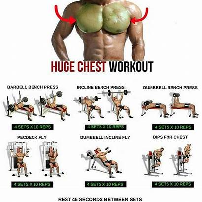 Chest Workouts Workout Ultimate Exercises Menswear Likes