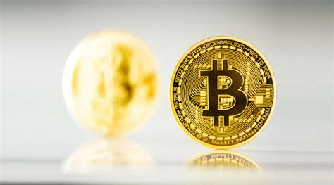 Wallets that can be accessed on the web from any internet connected device. Bitcoin Wallet- A Detailed Guidance for Beginners!