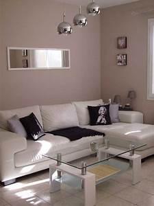 Photo Deco Salon : decoration salon moderne blanc avec deco salon blanc et gris top salon gris taupe et blanc et ~ Melissatoandfro.com Idées de Décoration