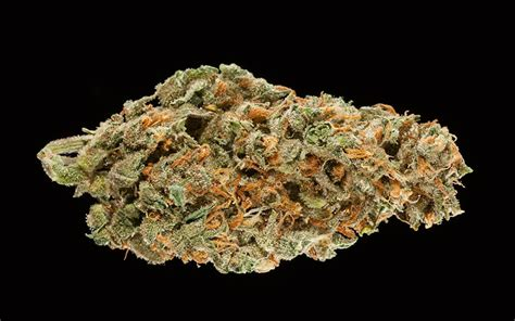Winners Of The 2017 Midwest Cannabis Cup  High Times