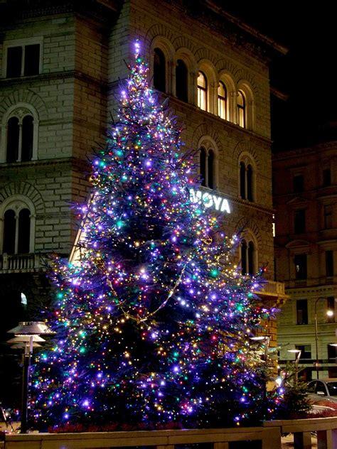 Weihnachtsbaum Blau Geschmückt by Weihnachtsbaum In Blau Foto Bild Kunstfotografie