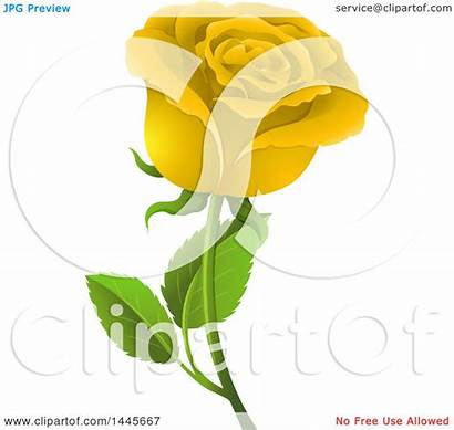Yellow Rose Illustration Royalty Clipart Vector Graphics