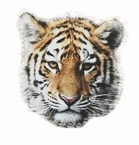 Tiger Head Transparent Tumblr