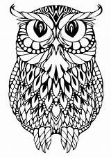 Owl Coloring Printable Adults Detailed sketch template