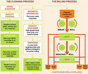 Wheat Cleaning And Milling Process Diagram  Cleaning Steps In Green